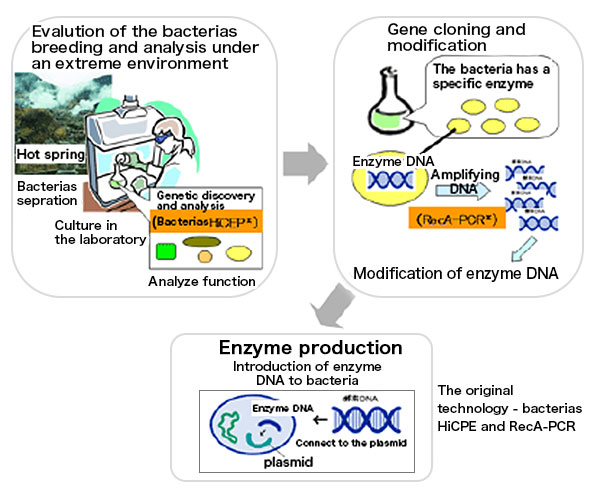 High performance enzyme design
