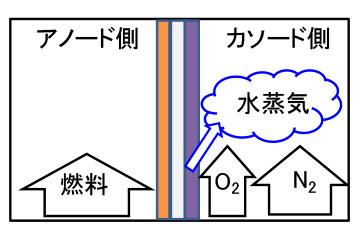 メタルサポート型SOFC