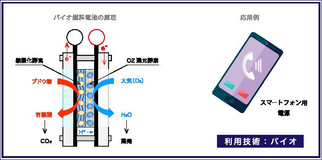 バイオ燃料電池